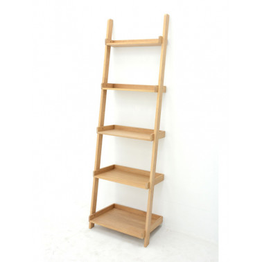 Wall ladder bookshelf